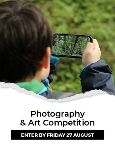 COVID Art Competition